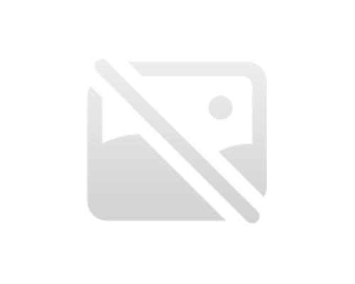 バーチツリーベニア乾燥装置
